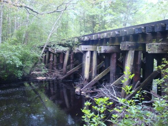 Goshen Pond May 2012 025