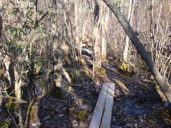 Batona Trail Overnight 028